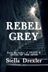 Rebel Grey Print Cover